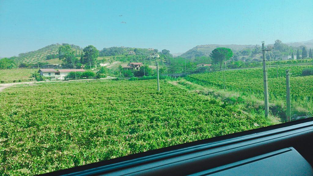 バーリ イタリア 車窓 トレニタリア 電車