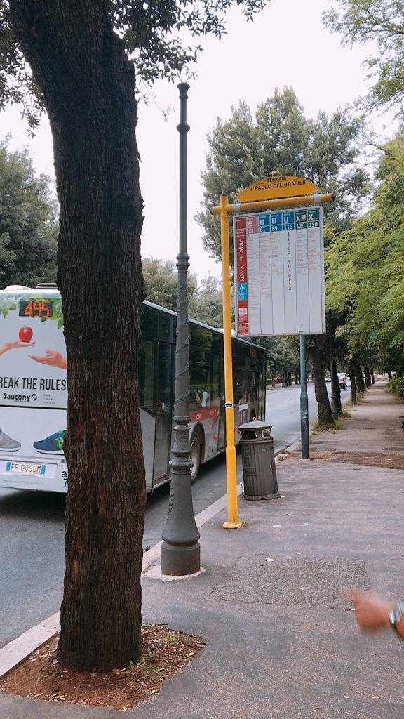 バス バチカン ヴァチカン