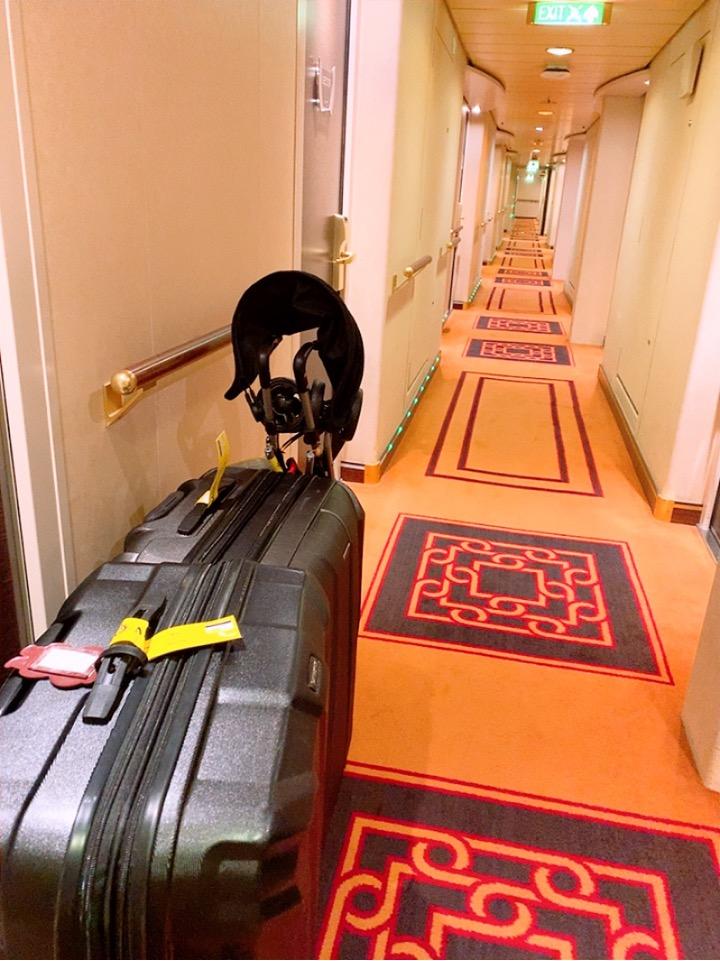 MSC MSCスプレンディダ 釜山 下船 スーツケース バッグ 回収