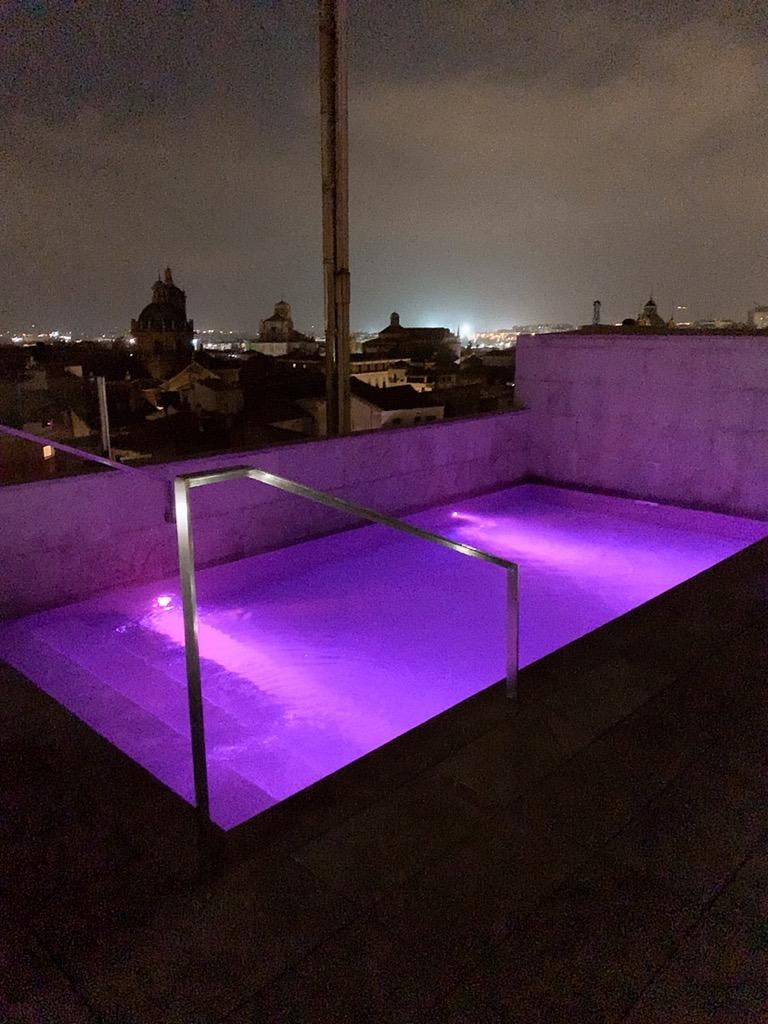 スペイン グラナダ ホテル 屋上 プール グラナダ ファイブ センス ルーム&スイート Hotel Granada Five Senses Rooms & Suites