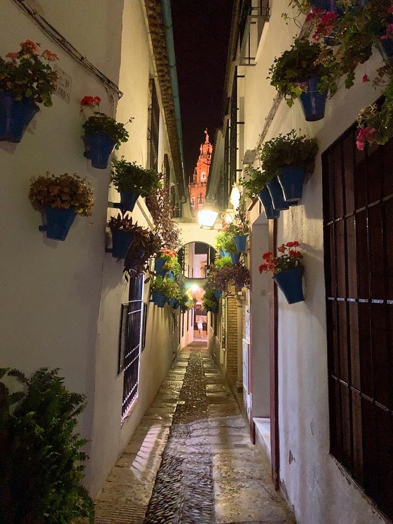 スペイン コルドバ ユダヤ人街 花の小道