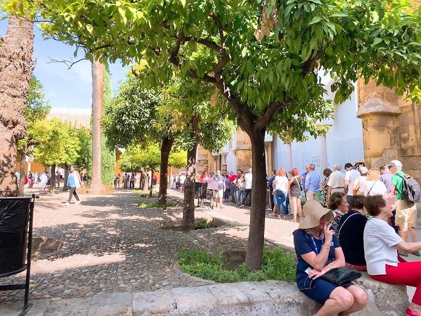 スペイン コルドバ メスキータ 入場 列 行列