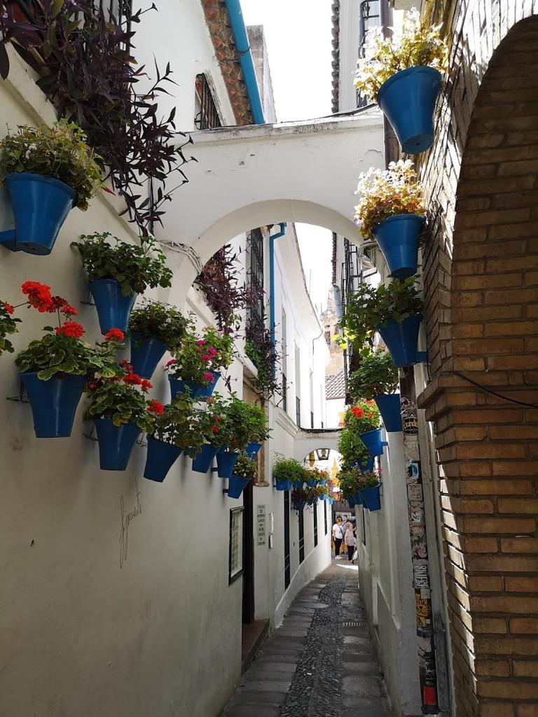 スペイン コルドバ 花の小道 ユダヤ人街 観光 モデルプラン