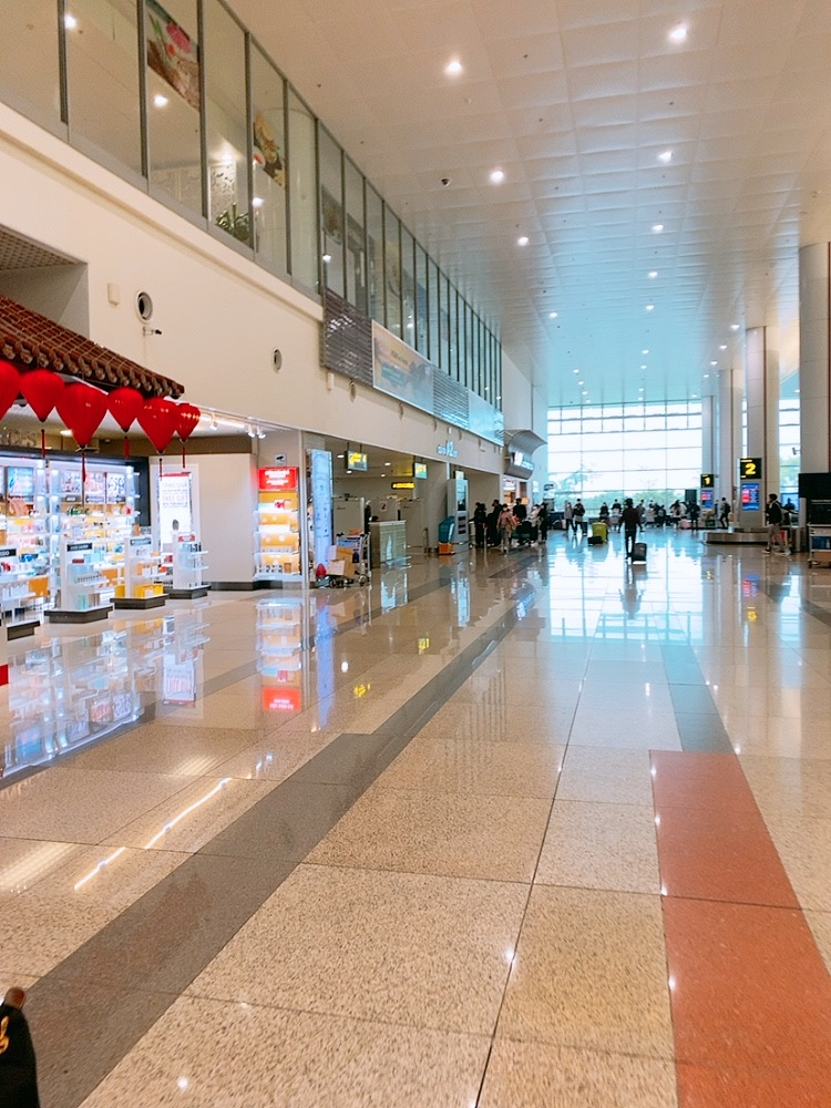 ハノイ 空港 ターンテーブル スーツケース