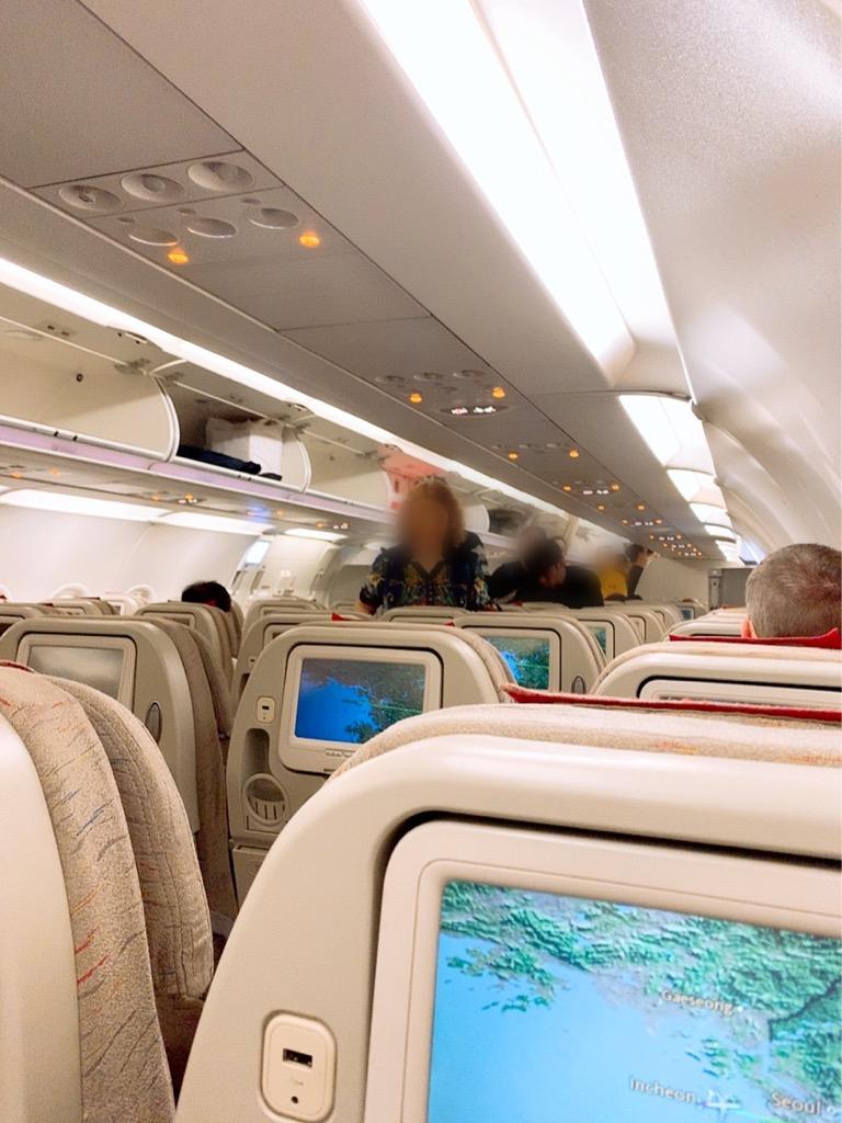 仁川 東京 成田 アシアナ航空 アシアナエアライン 機内の様子
