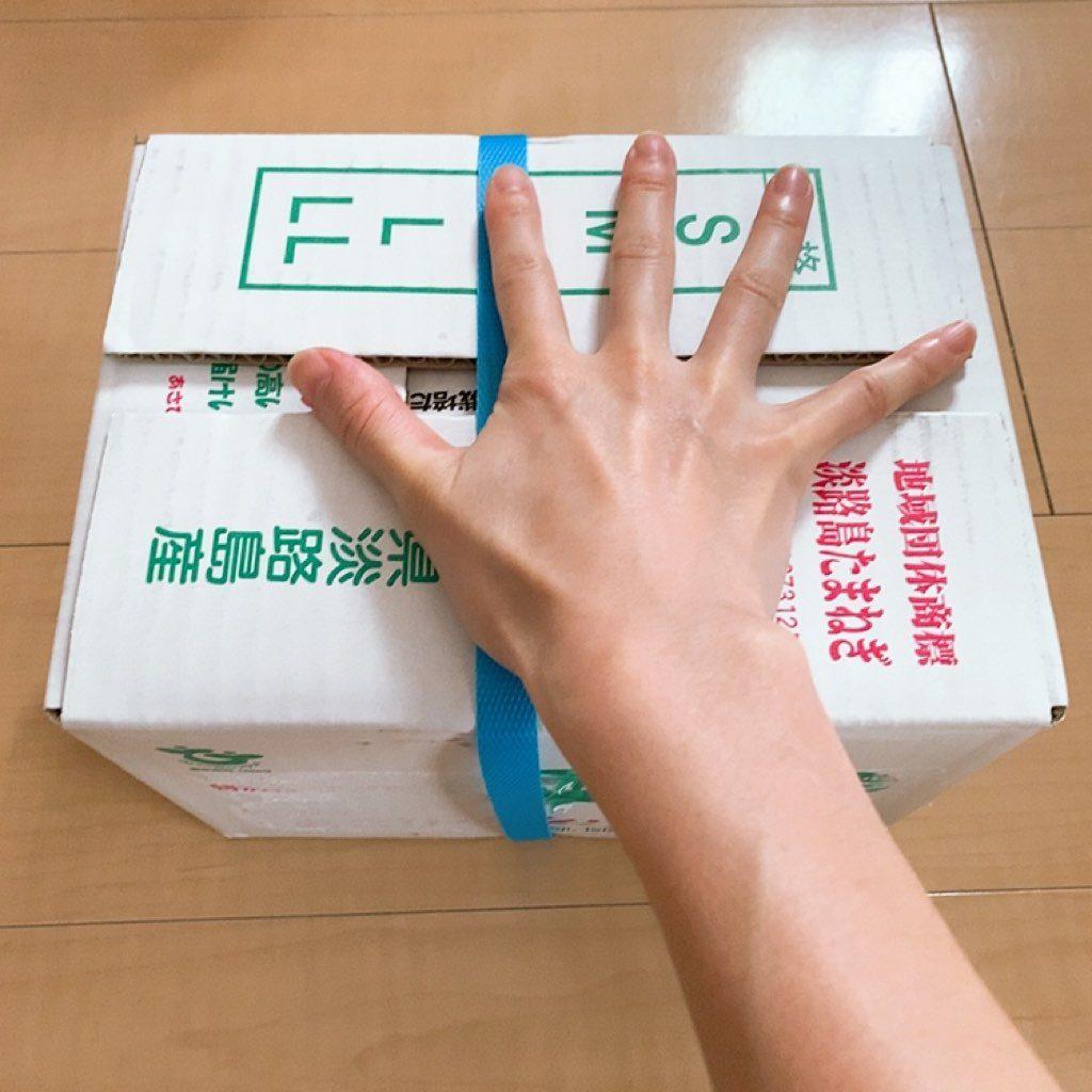 淡路島 玉ねぎ ターザン 3キロ なかて品種 ターザン 梱包 サイズ