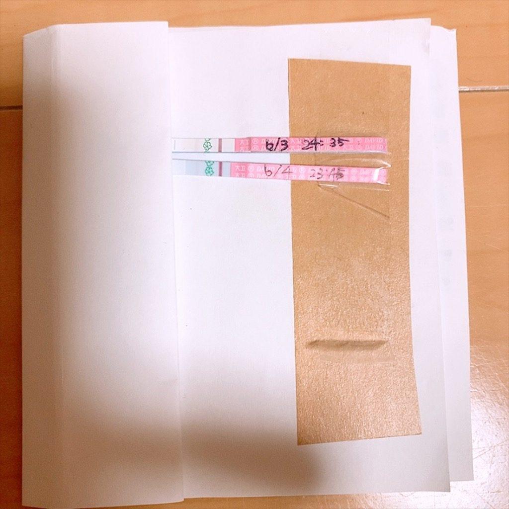 クロミッド 排卵日検査薬 低温期14日目 低温期