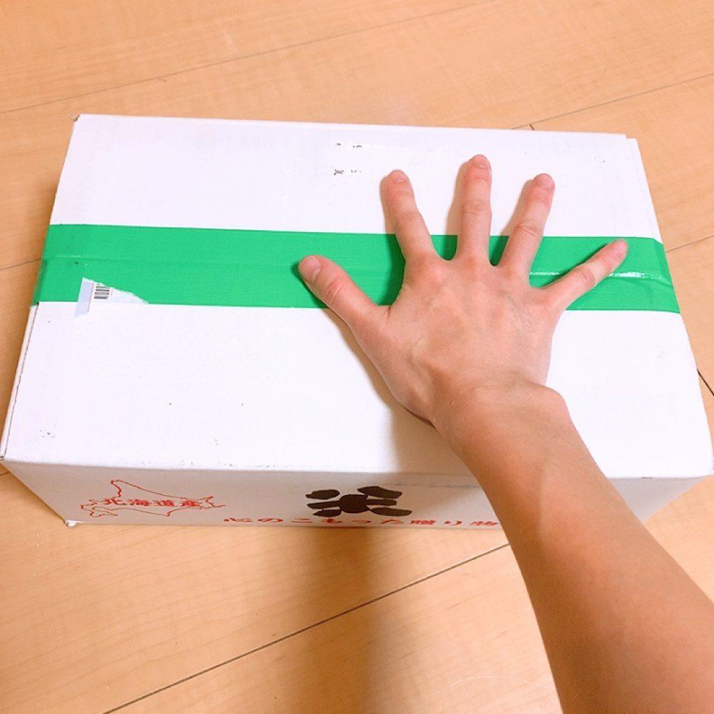 ご飯 通販 うたう ゆめぴりか 北海道 ご飯 お米