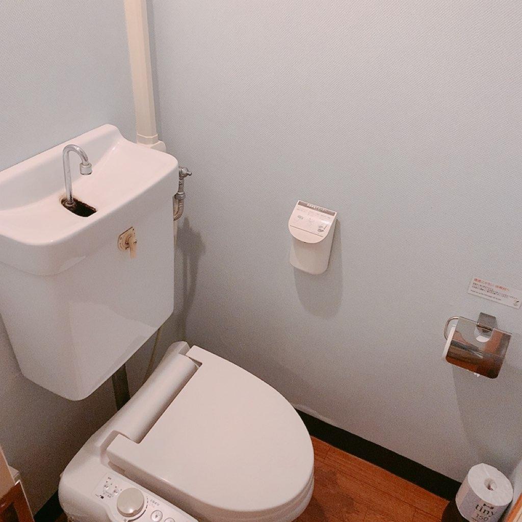 指宿 ホテル 休暇村 トイレ 洋室