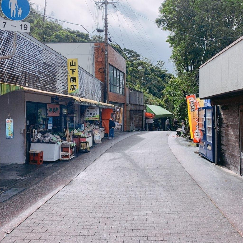 山下商店 龍宮神社 長崎鼻 観光 鹿児島 指宿 観光 バス のったりおりたり バス 乗り放題