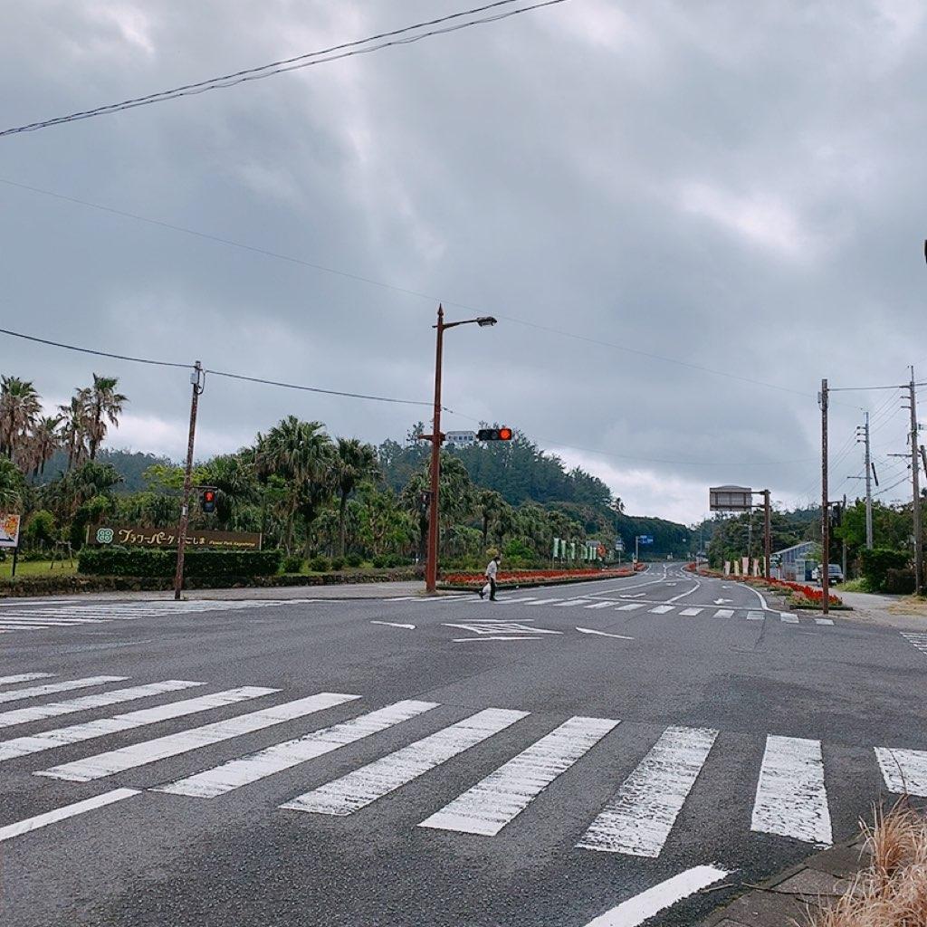 指宿 観光 レンタカーなし 徒歩 フラワーパーク 西大山駅