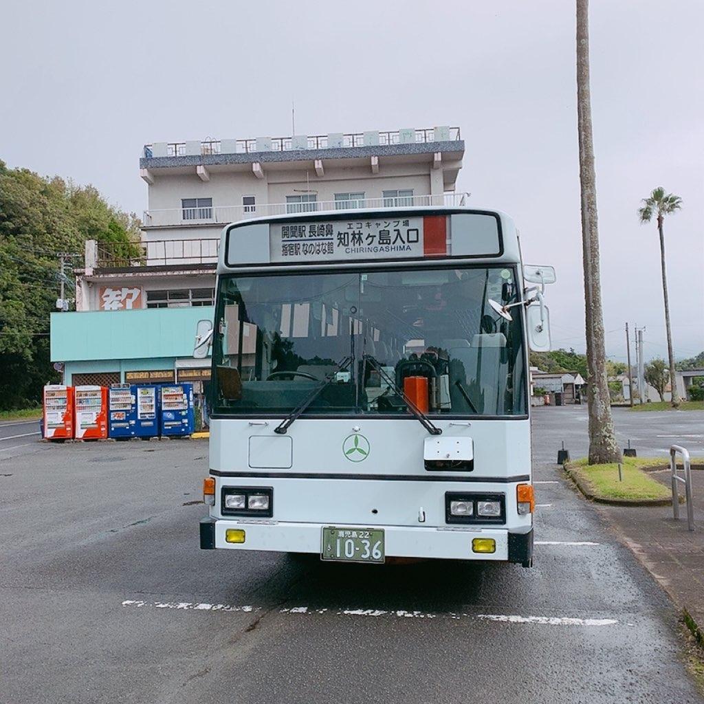 池田湖 のったりおりたり 1日乗車券 バス 乗り放題