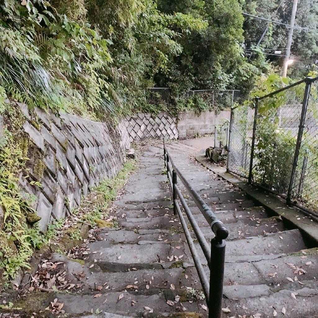 鹿児島 城山公園 展望台 夜 危ない 暗い 観光 階段 遊歩道