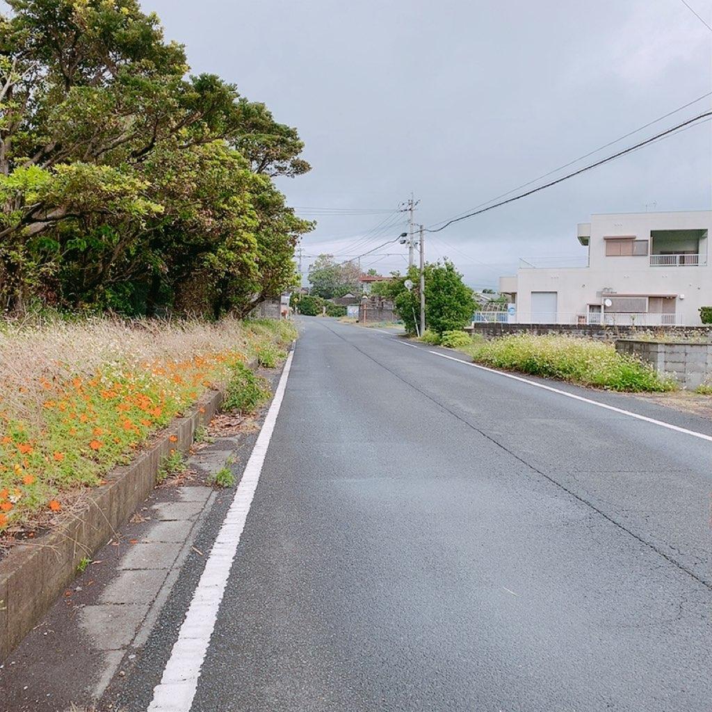 指宿 観光 レンタカーなし 徒歩 徳光神社 西大山駅