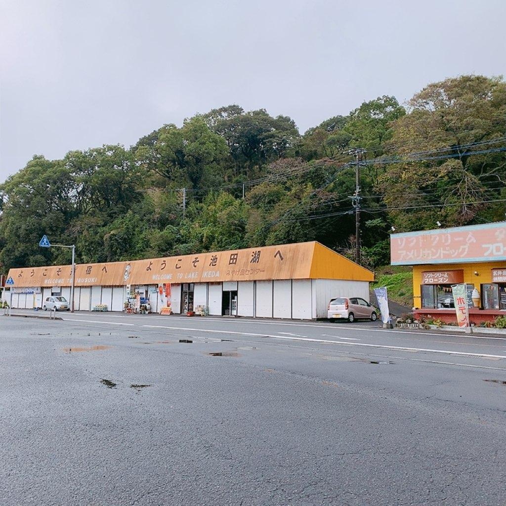 鹿児島 指宿 観光 バス のったりおりたり バス 乗り放題 池田湖 おすすめ